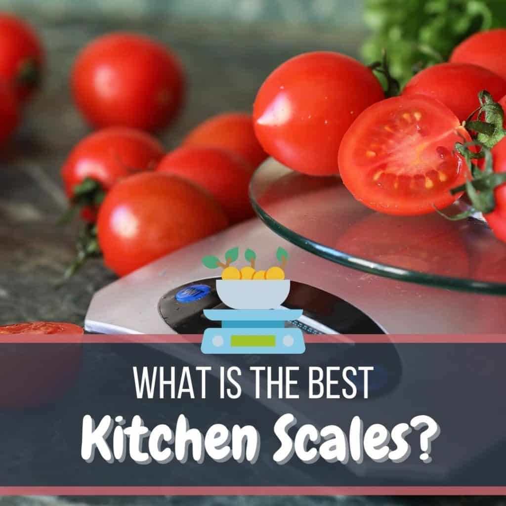 Best kitchen scales featured image